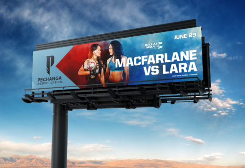 MacFarlane VS Lara, Bellator MMA Fight